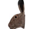 Quail Wall Vase Hare